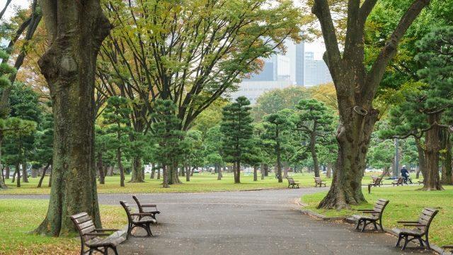 公園で長距離
