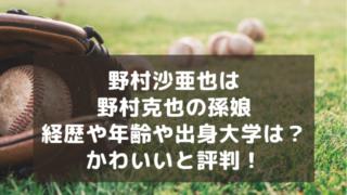 チケット 野球 選抜 高校 2021